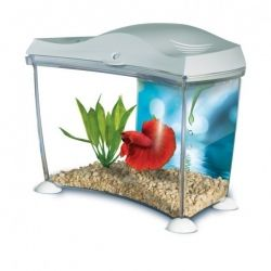 Hagen Aquarium Marina Betta Kit Skull White 2 L