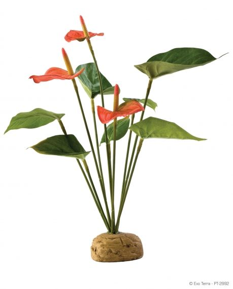 Exo Terra Rainforest Plant Anthurium Bush РТ-2992