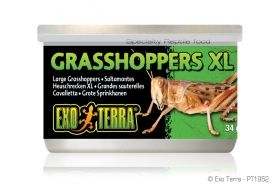 Exo Terra Canned Foods Grasshoppers PT-1952 34g XL