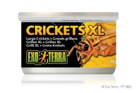 Exo Terra Canned Foods Crickets PT-1962 34g XL
