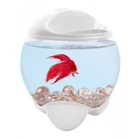Tetra Aquarium Betta Bubble 1.8L