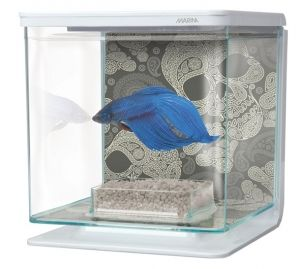 Hagen Marina Betta EZ Care Aquarium - Blue - 2.5 L